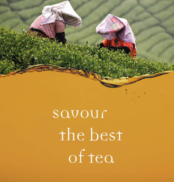 Savour the best of tea