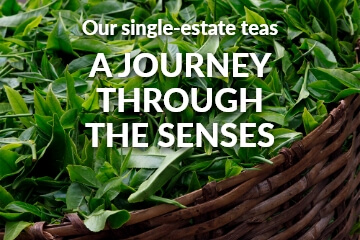 Single-estate teas