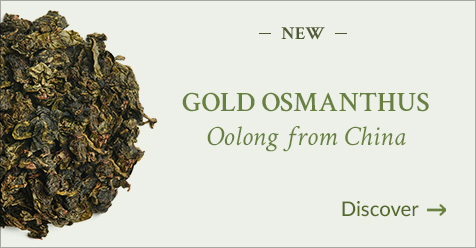 Osmanthus d'Or