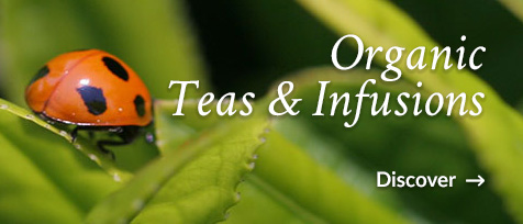 Organic teas and infusions