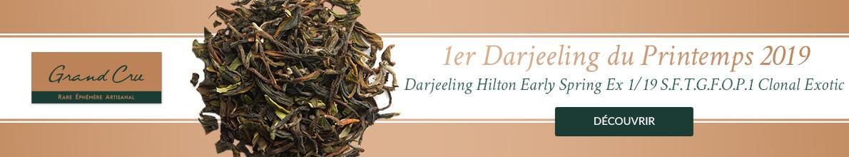 Premier Darjeeling de la Récolte de Printemps 2019