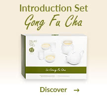 Introduction Set Gong Fu Cha