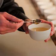Understanding tea